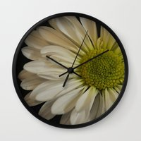 pushing daisies Wall Clocks featuring Pushing Dasies by Rachel Goodson Quinn