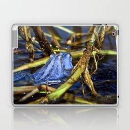 Blue Frogs 10 - Rana arvalis Laptop & iPad Skin