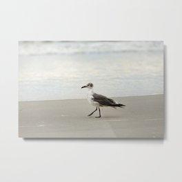 Seagull Stroll Metal Print