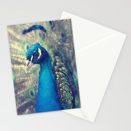 Peacock in the courtship Stationery Cards