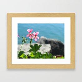 Lakeside Flowers I Framed Art Print