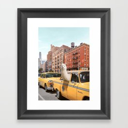 Alpaca in New York Framed Art Print
