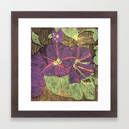 Morning Glories From My Garden Framed Art Print
