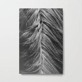 Mane Metal Print