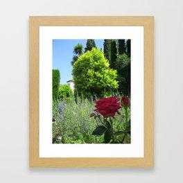 Los Flores y Arboles Framed Art Print