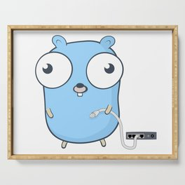 Golang - gopher wizard Serving Tray