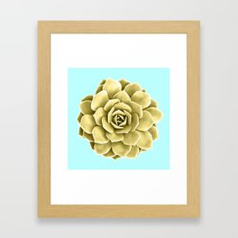 Yellow Succulent Plant on Teal Framed Art Print