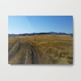Double Track Metal Print
