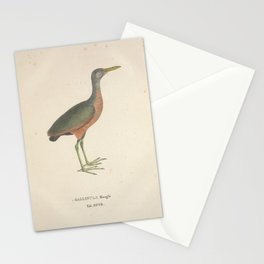 Little Wood Rail gallinula mangle Stationery Cards