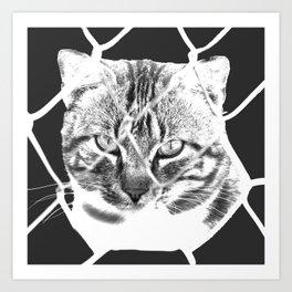freedom for animals Art Print