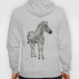 Zebra Watercolor Baby Animals Hoody