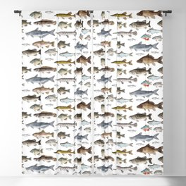 A Few Freshwater Fish Blackout Curtain