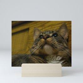 Portrait of Rosie the Cat Mini Art Print