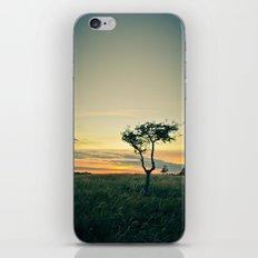 Dublin Sunset iPhone & iPod Skin