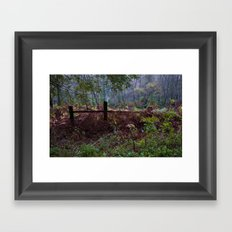 Woodland Maze 2 Framed Art Print