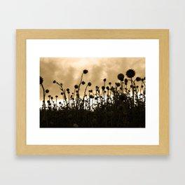 Thistles II Framed Art Print