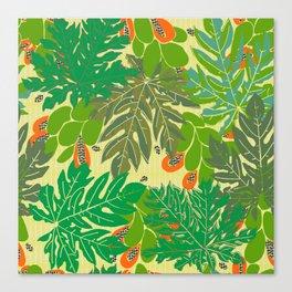 papaya trees Canvas Print