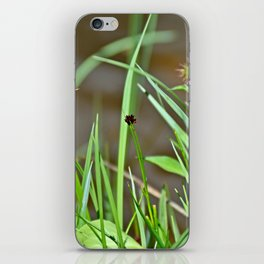 Lake Irene Alpine Floral Study 3 iPhone Skin