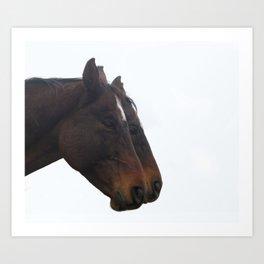 Twin Horses Photography Print Art Print
