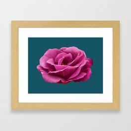Rhapsody in Blue Rose Framed Art Print