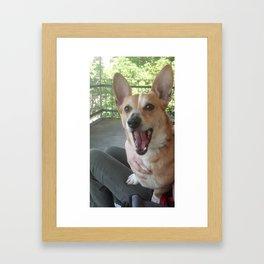 Corgi on the Lanai Framed Art Print