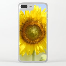 Sunflower - Flower, Floral, Nature Photography Clear iPhone Case