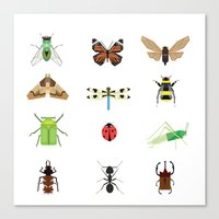 insects Canvas Prints featuring insects by Alysha Dawn