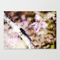 Dragonfly :: Among the Violets Canvas Print