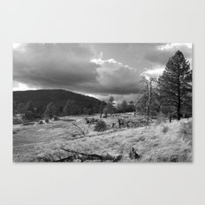 Storm Rising in the Cuyamacas Canvas Print