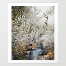A Creek on a Snowy Day in Boulder, Colorado Art Print