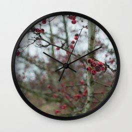 Rosa Canina, dog rose Wall Clock