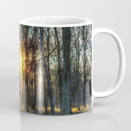 Early Morning Forest Coffee Mug