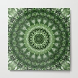 Mandala power of nature Metal Print