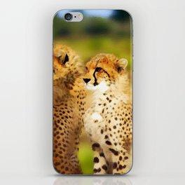 Pair of Cheetahs iPhone Skin