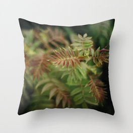 Mountain Ash Throw Pillow