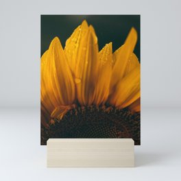 flower photography by eberhard grossgasteiger Mini Art Print