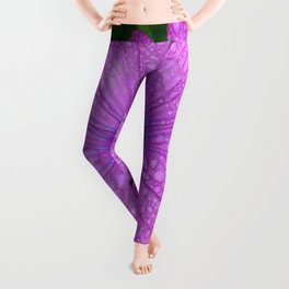 Purple African Daisy with Raindrops Leggings