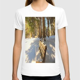 Park Bench in the Winter T-shirt