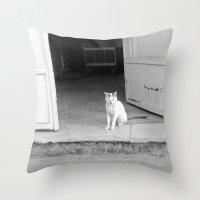 arab Throw Pillows featuring Arab kitty by Raleigh Tillman