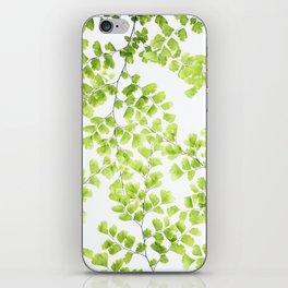 Ginko Leaves iPhone Skin