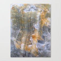 onix mineral Canvas Print