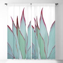 Elegant Agave Fringe Illustration Blackout Curtain