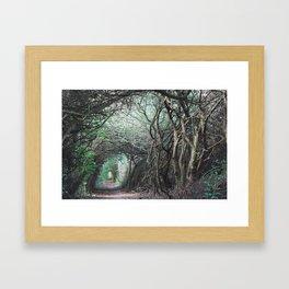 Forest Path Framed Art Print