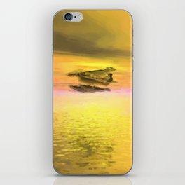 Seaplane Flight at Sunset iPhone Skin