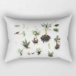 The Discoveries Rectangular Pillow
