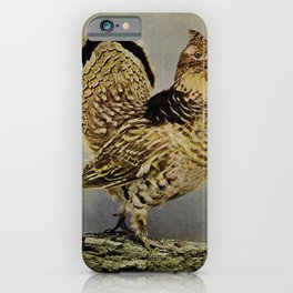 Vintage Print - Birds and Nature (1901) - Ruffed Grouse iPhone Case