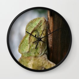 Green Chameleon Holding On To A Shed Door Wall Clock