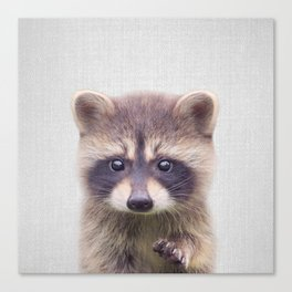 Raccoon - Colorful Canvas Print