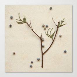 Natural Symbols - Small Tree Canvas Print