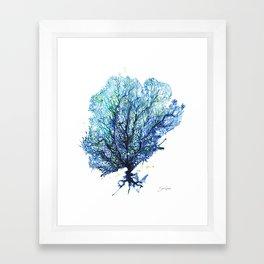 Fan Coral - Aqua Framed Art Print
